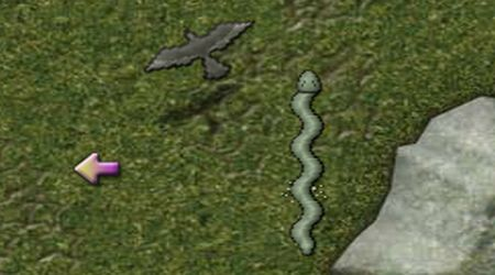 Screenshot - Snake Adventure